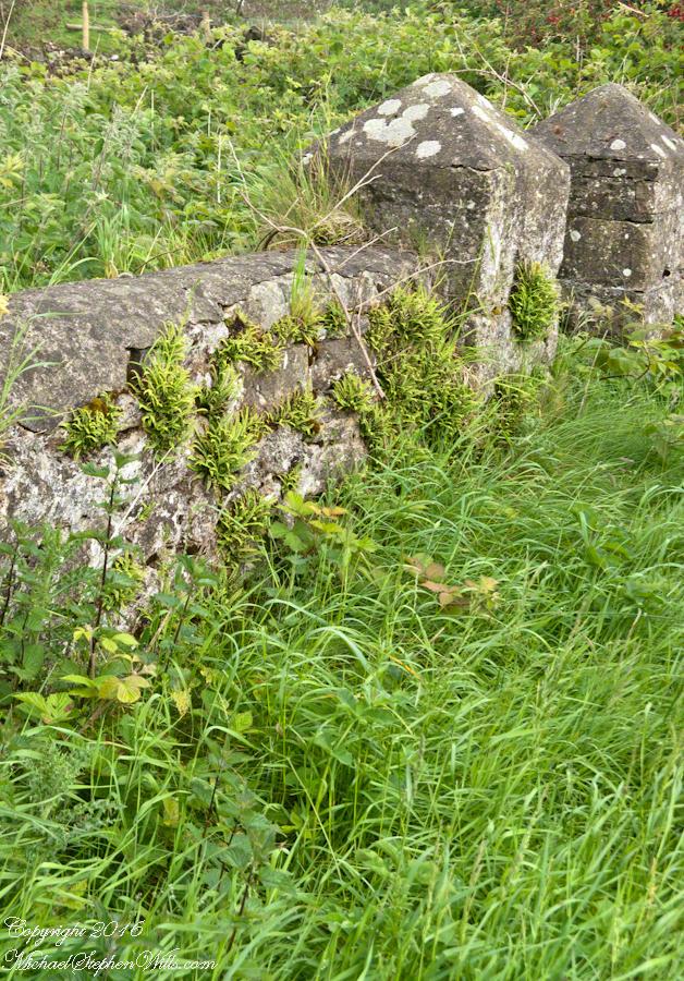 Schoolhouse Ruin stone fence– CLICK ME!!!!