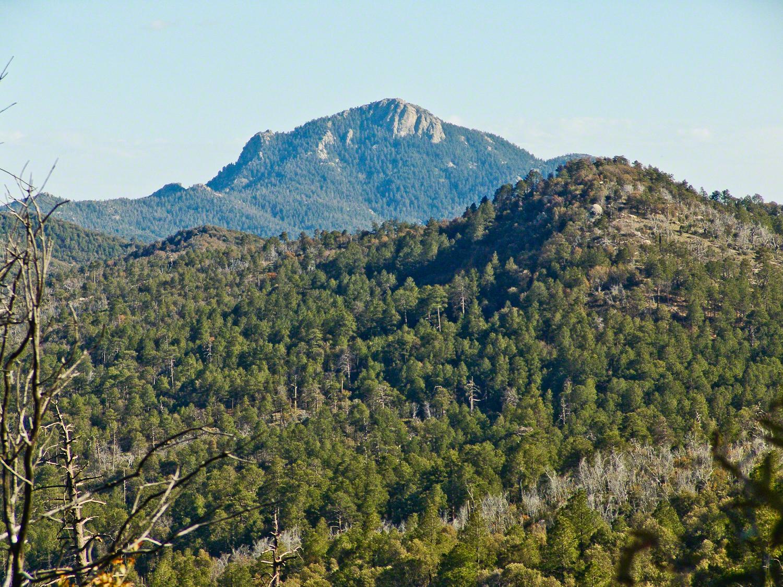 Telephoto view of Rincon Peak -- CLICK ME!!!!
