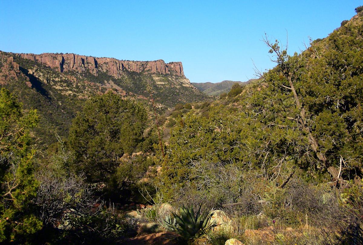 Nameless Canyon Morning