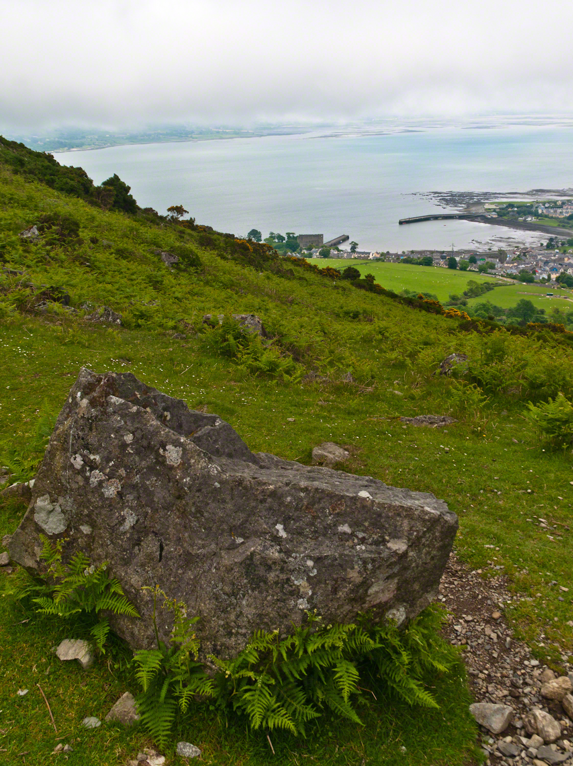 leprechaunRockCarlingford-02245