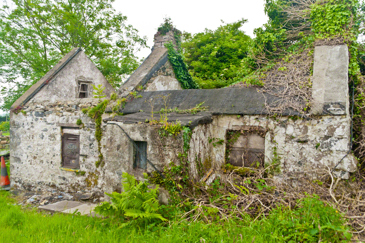Ruined Cottage, Carlingford