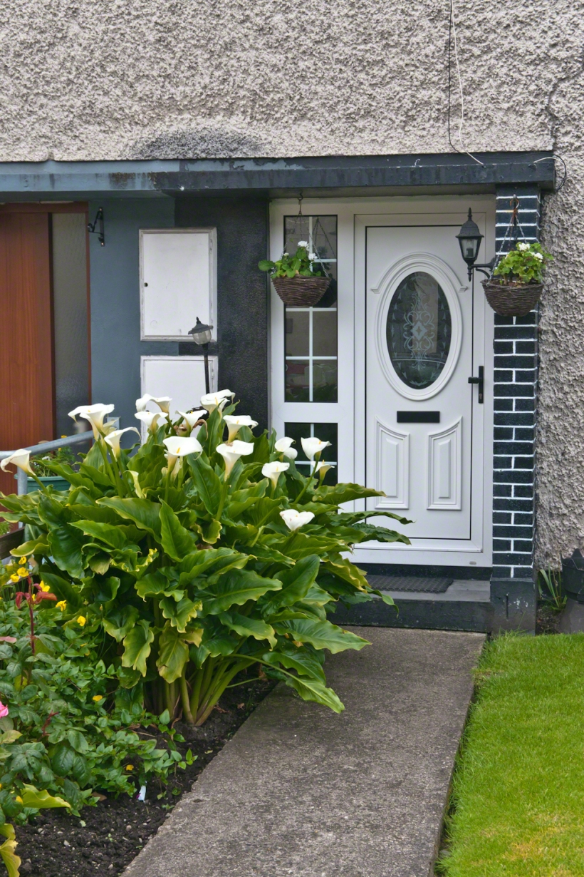 Entrance with Calla Lilies, Carlingford