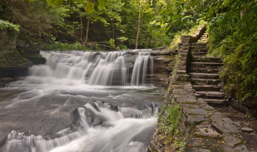 Woodland Falls in August