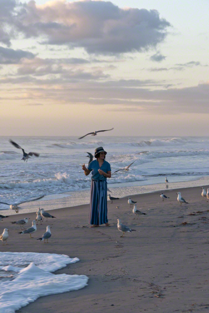 Lady and Gulls – CLICK ME for more Florida photography.