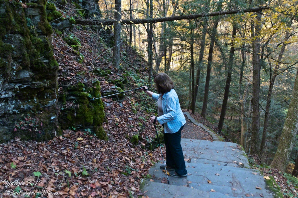 Pam examines the moss