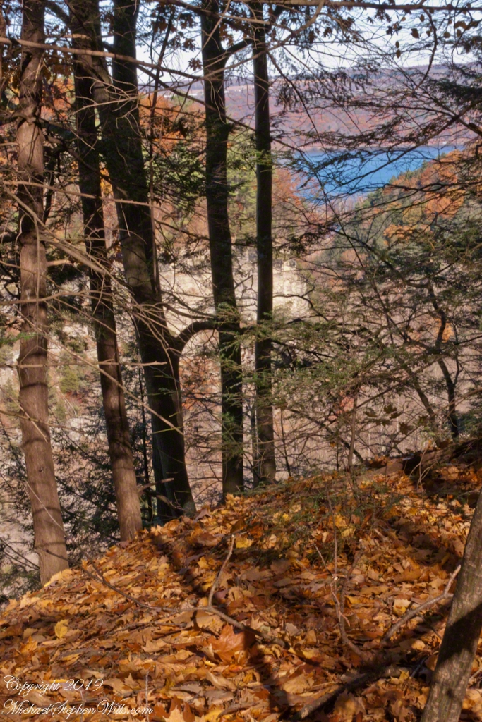Gorge View with Oak Leaves