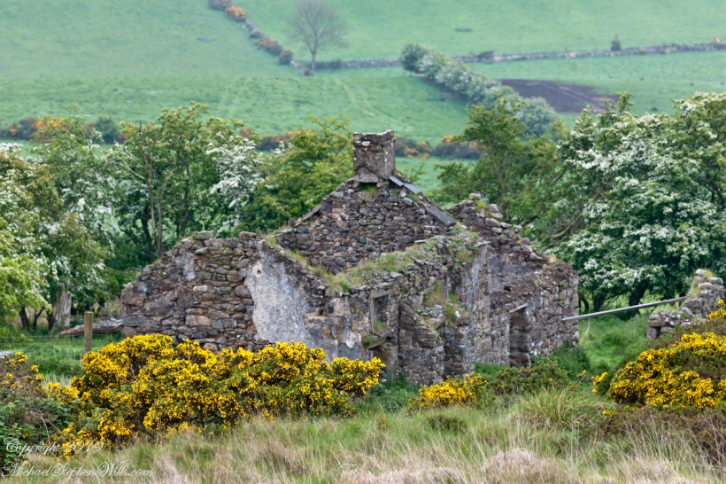 Farmhouse ruin, Slievenaglogh Townland I
