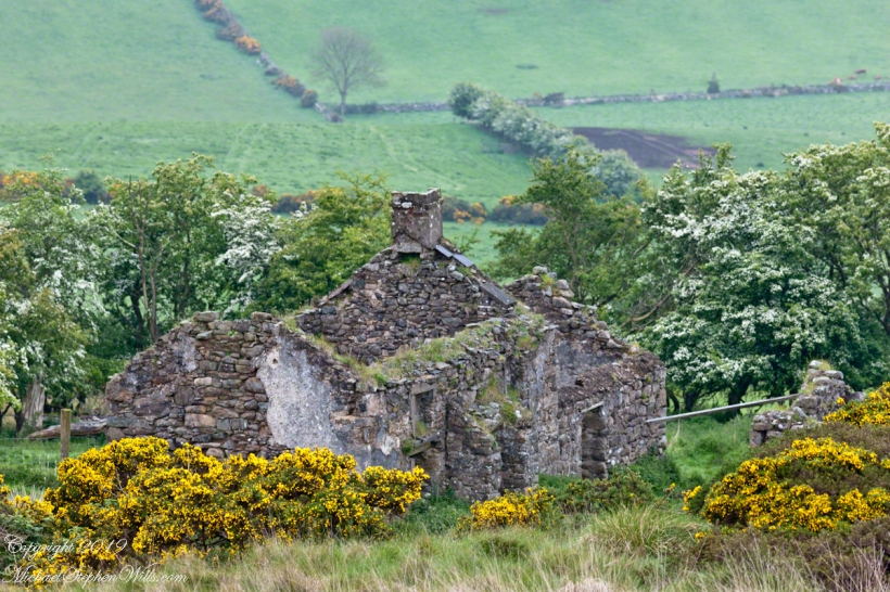 Farmhouse ruin, Slievenaglogh Townland II