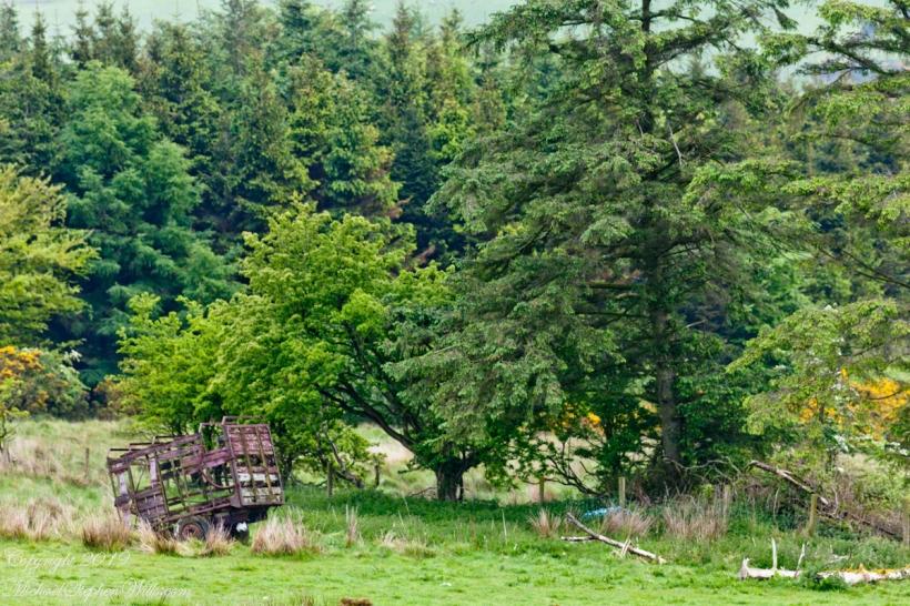 Abandoned Hay Wagon