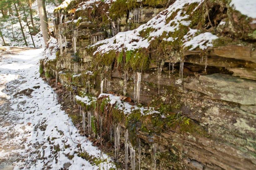 Rim Trail icicles